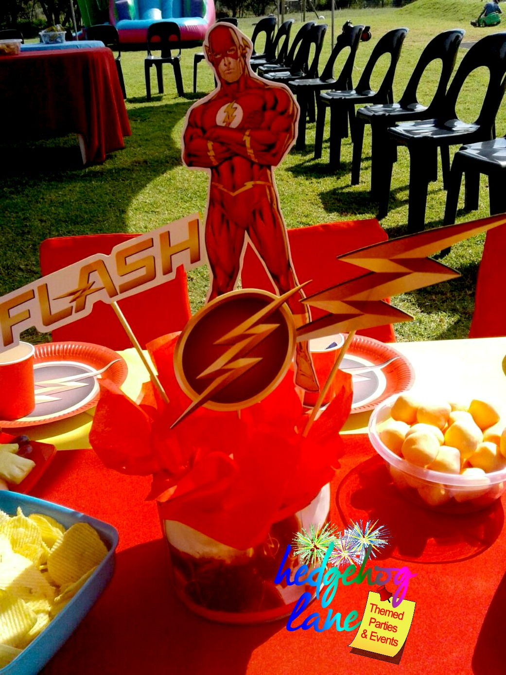 Captain America and Flash Party - Hedgehog Lane:Themed ...